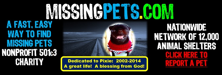 """ Missing Pets Web Site - Your Guide to Lost Pets, Lost and Found Dogs, Cats, and Other Pets - find lost cats, find lost dogs, find lost pets, finding lost cats, finding lost dogs, finding lost pets, found cats, found dogs, found pets,lost and found, lost and found cats, lost and found dogs, lost and found pets, lost cat, lost cats, lost dog, lost dogs, lost pet, lost pets, missing cats, missing dogs, missing pets, Lost Found Missing Dogs Cats Pets"""